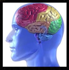 bariatric surgery for the mind